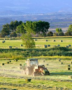Haying Equipment A Beginner's Guide Haying equipment for small acreages--a buyer's guide for Colorado hay property Country Farm, Country Life, Country Living, Country Roads, Horse Hay, Horses, Hay For Sale, Champs, Barns