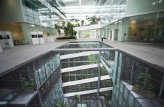 Image: Solaris Building, Singapore (© 3D Joe and Max/Rex Features)