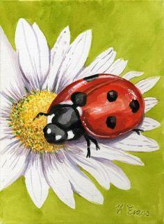 ladybird-on-daisy-frances-evans.jpg (511×700)