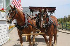 From the Gerald & Joan blog: American summer on Mackinac Island, Michigan.