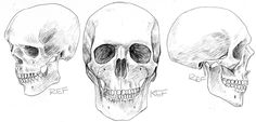 I need your help with ConceptArt organized by Jason Manley Human Drawing Reference, Art Critique, I Need You, Tutorials, Drawings, Image, Art Criticism, Need You, Sketch