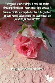 Morning Blessings, Good Morning Wishes, Good Morning Quotes, Happy Saturday Quotes, Friday Messages, Lekker Dag, Sympathy Messages, Afrikaanse Quotes, Goeie Nag