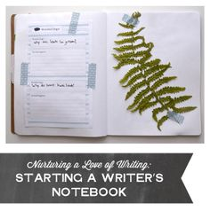 Nurturing a Love of Writing: Starting a Writer's Notebook (Playful Learning)