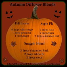 Fall is in the air here in Kansas City where it's a cool 60 degrees today.  Puts me in the mood for a great autumn diffuser blend!  I think I'm going to try out the snuggie blend of 3 drops of cinnamon bark, 2 drops white fir, and 2 drops of clove.  Sounds fantastic!