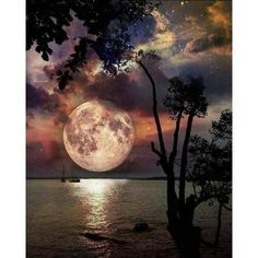 Beach Paradise California Two-Tone Mug ✓ Unlimited options to combine colours, sizes & styles ✓ Discover Mugs by international designers now! Good Night To You, Popular Photography, Moon Photography, Beautiful Moon, Beautiful Places, Cross Paintings, Love Photos, Night Skies, Beautiful Landscapes