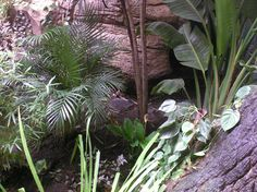 jardinera de plantas. http://www.elhogarnatural.com