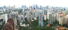 SINGAPORE is one of the four Asian tigers, the world's leading place to do business and a vibrant tourism hotspot.