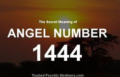 Angel Number 1444 and its Meaning Angel Number Meanings, Angel Numbers, Spiritual Meaning, Spiritual Path, What Is Birthday, Free Daily Horoscopes, Angel Quotes, Angel Guidance, Psychic Development