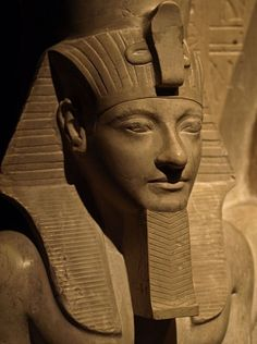 Head of the Pharaoh Horemheb, detail from a statue of Horemheb and the God Horus. New Kingdom of Ancient Egypt, ca. 1343-1315 BC. Located in the Museum of Art History, Vienna.MOD