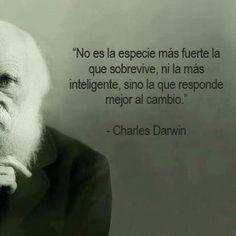 La evolución de las especias. Charles Darwin #frase