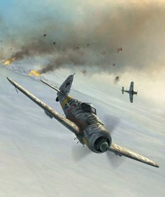 Fw 190F-1 by Jerry Boucher