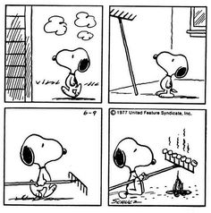 Snoopy has a sweet idea here, eh? Roast marshmallows on the tongs of a rake! Snoopy Love, Snoopy E Woodstock, Charlie Brown Snoopy, Peanuts Gang, Peanuts Cartoon, Peanuts Comics, Snoopy Comics, Bd Comics, Sally Brown