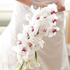 These are the white orchids I want for my bouquet and hair.  Gorgeous!!