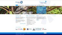 Promen Website Website