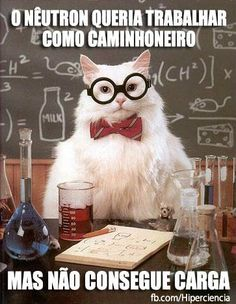 The Absolute Best Of Chemistry Cat - World's largest collection of cat memes and other animals Chemistry Cat, Science Cat, Science Puns, Cat Puns, Funny Cat Memes, Cat Jokes, Funniest Memes, Golf Humor, Sorry Memes