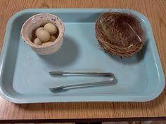 Montessori Design: Practical Life