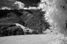 Foto Turelli paesaggio 2