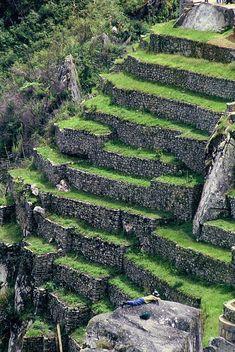 Contemplating Machu Picchu - Machu Picchu, Cusco