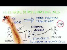 What is ALD? Adrenoleukodystrophy explained. - YouTube