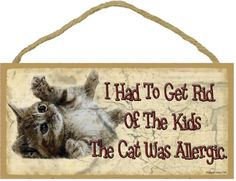 Had To Get Rid Of Kids The Cat Was Allergic Rolling Kitten Cat Sign Plaque 5x10 Funny -- See this great product.