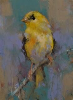 Daily Pastel Painting: Goldfinch