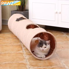 Kittens Playing, Cats And Kittens, Play Tunnel, Long Cat, Funny Toys, Pet Rabbit, Rabbit Fence, Interactive Toys, Buy Pets