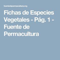 Fichas de Especies Vegetales - Pág. 1 - Fuente de Permacultura