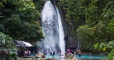 📸 Jungle pool in Kawasan Falls, Lazi, Siquijor 🇵🇭 A post shared by The Philippines 🇵🇭 ( on Dec 2017 at PST Kawasan Falls, Philippines, Waterfall, Country, Outdoor, Outdoors, Rural Area, Waterfalls, Country Music