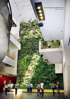Nedlay Living Walls. Clean air, naturally