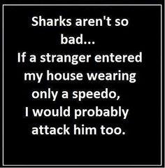 lol.. still afraid of sharks just understand them a little better now