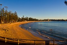 A calm day at Manly Beach Jul Manly Beach, Beaches, Sydney, Country Roads, Travel, Trips, Beach, Viajes, Traveling