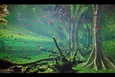 Flooded Forest.
