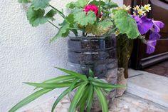 Flowerpot made of empty plastic water bottle
