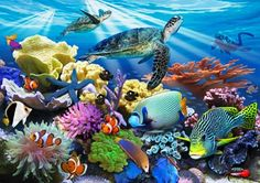 Reef Life Mural - Howard Robinson| Murals Your Way