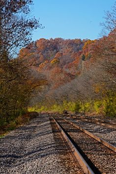 Fall colors on the railroad tracks below the bluffs in Castlewood State Park November 2017.