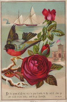 Bluebird & Red Roses - The Graphics Fairy