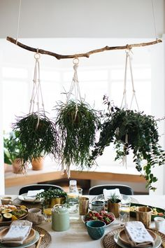DIY Hanging Plant Centrepiece (& A Nespresso Giveaway!)