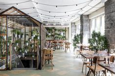 Väkst: A Greenhouse Restaurant in Copenhagen https://www.bloglovin.com/blog/post/3748417/4886327168 via @bloglovin