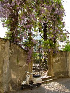 italia via vespa Positano, Amalfi, Beautiful World, Beautiful Places, Beautiful Flowers, Toscana Italia, Cinque Terre, Garden Gates, Yolo