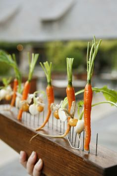 Blue Hill at Stone Barns turns food into art