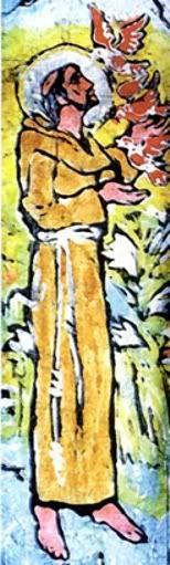 São Francisco de Assis St Francis Assisi, Saint Francis, St Francisco, Clare Of Assisi, St Clare's, Pace, Santa Clara, Genealogy, Christ