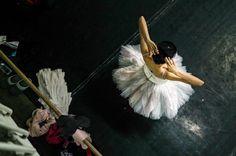 Repetiţii pentru reprezentaţia spectacolului de balet din 26 februarie/ Rehearsals for the ballet performance on February 26 Ballet Performances, Project Steps, Balerina, Photo Sessions, Backstage, February, Dance, Projects