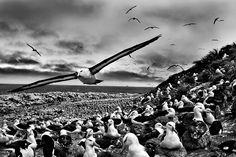 jason-islands.jpg (1500×1000)