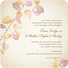 Delicate Ambiance - Signature White Textured Wedding Invitations - Mikan Ink - Fresco Cream - Pink : Front