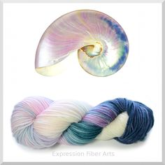 Expression Fiber Arts - PEARL NAUTILUS WOOL ARAN, $22.33 (http://www.expressionfiberarts.com/products/pearl-nautilus-wool-aran.html)