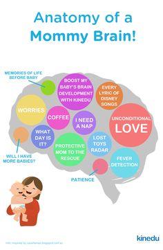 Anatomy of a mom's brain!