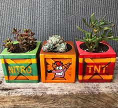 "EB Games Australia no Twitter: ""Woah! These mugs-turned-succulent holders are neat as. : hollybris7 on Instagram.… "" ."