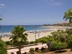Studio in Las Americas - 1 Bed Studio for rent in Playa de las Americas Tenerife sleeps up to 4 from £154 / €175 a week