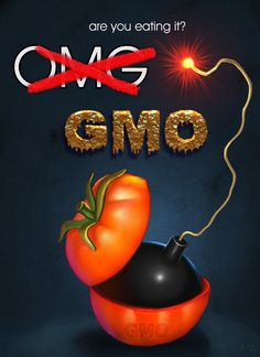 GMO's #monsanto #gmo #geneticallymodified