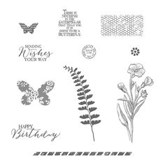 Butterfly Basics stamp set, Stampin' Up!